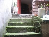 http://oscarayala.laveneno.org/files/gimgs/th-14_03.jpg